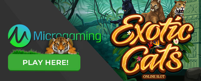 Click to play Exotic Cats slot