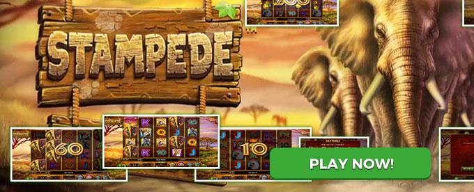 Play Stampede now!