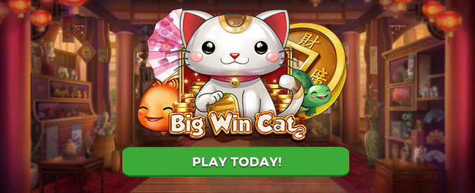 Play Big Win Cat slot now