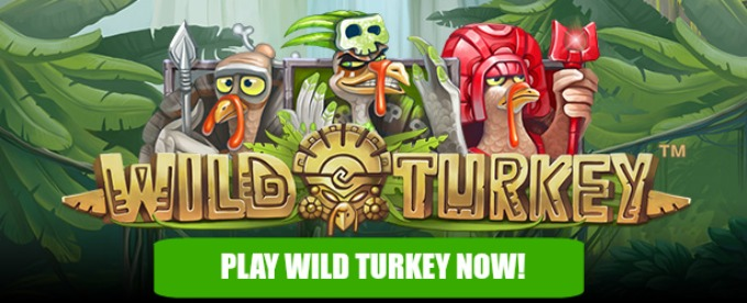 Play Wild Turkey slot at LeoVegas casino